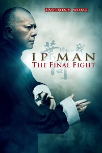 IP MAN FINAL FIGHT - borsalino distribution